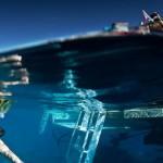 Great Barrier Reef Diving