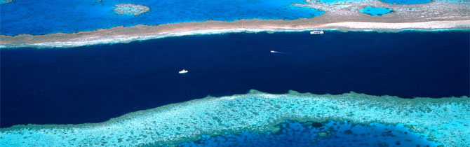 Great Barrier Reef Information