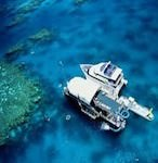 Knuckle Reef Tour from Whitsundays