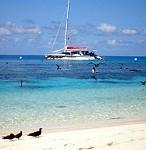 Port Douglas Sunset Harbour Cruise 3