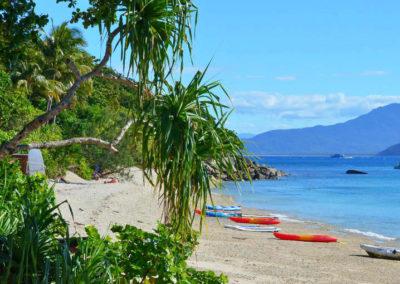 Fitzroy island image