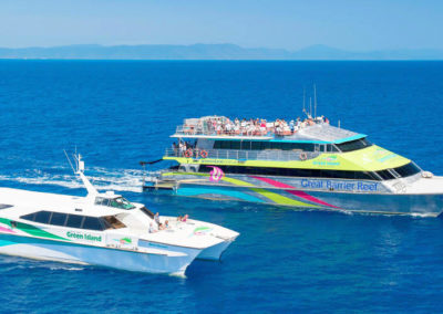 big cat green island boats