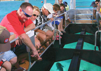 green island glass bottom boat hire