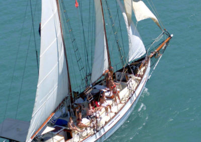 whitehaven sail 5