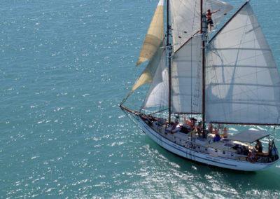 whitehaven sail 6